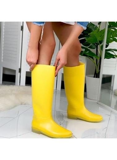 Limoya Çizme Sarı